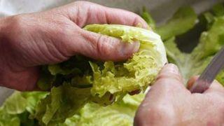 Cómo prevenir una intoxicación alimenticia
