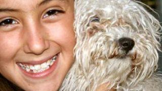 Adoptar a un perro cuando tienes niños